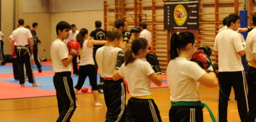 Kickboxen im Training